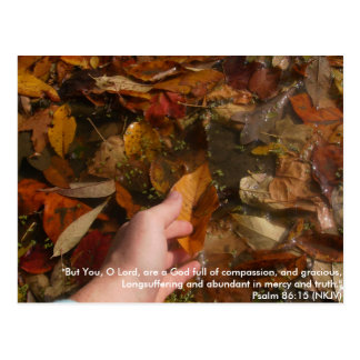 "Digital Camera 491, ""But You, O Lord, are a God... Postcard"