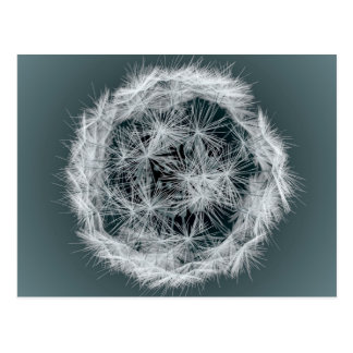 Digital Dandelion On Blue Postcard