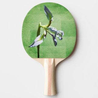 Digital Iris Ping-Pong Paddle