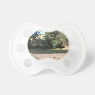 Digley Baby Pacifiers