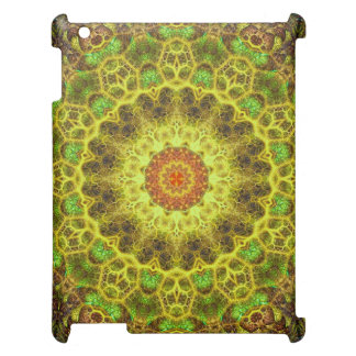 Dimensional Transition Mandala Case For The iPad 2 3 4