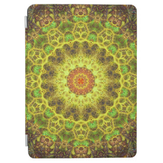 Dimensional Transition Mandala iPad Air Cover