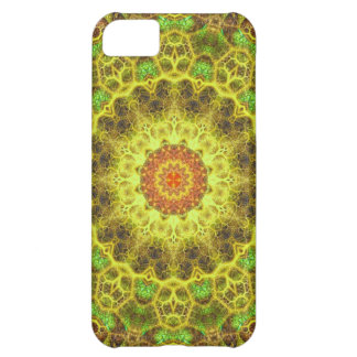 Dimensional Transition Mandala iPhone 5C Cases