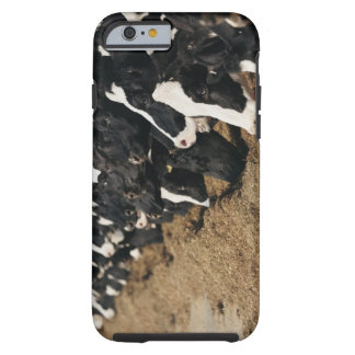 Diminishing Perspective of Cow's Heads Grazing Tough iPhone 6 Case