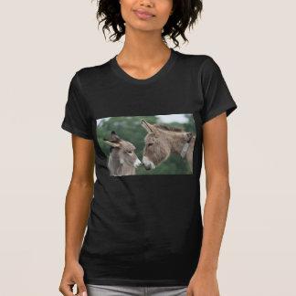 Dinky donkey T-Shirt