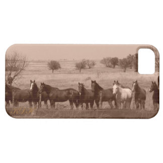 Dinner Time iPhone 5 Cover