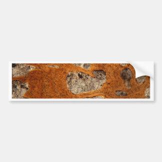 Dinosaur bone under the microscope bumper sticker