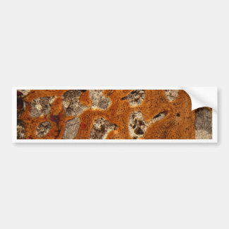 Dinosaur bone under the microscope bumper sticker