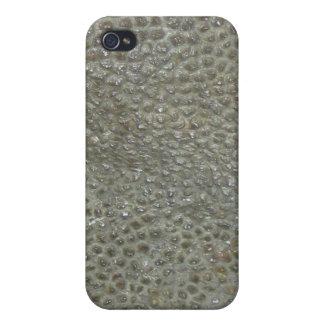 Dinosaur  case for iPhone 4