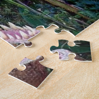 Dinosaur gift box for CHildren Puzzles