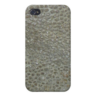 Dinosaur  iPhone 4 cover