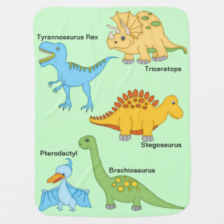 Dinosaurs Swaddle Blanket
