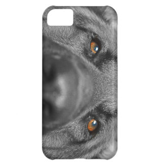DIO the GERMAN SHAPHERD iPhone 5C Case