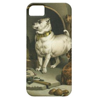'Diogenes' by Sir Edwin Landseer (1802-1873) iPhone 5 Cases
