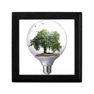 Diorama Light bulb Tree Gift Box