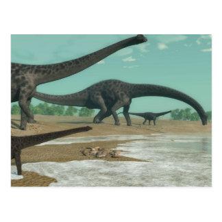 Diplodocus dinosaurs herd - 3D render Postcard