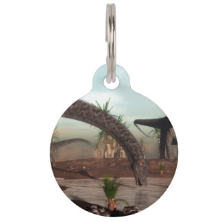 Diplodocus dinosaurs herd going to drink pet name tag