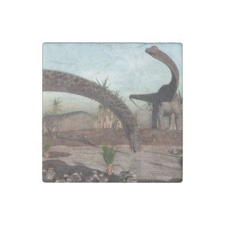 Diplodocus dinosaurs herd going to drink stone magnets
