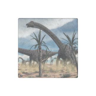 Diplodocus dinosaurs herd in the desert stone magnets