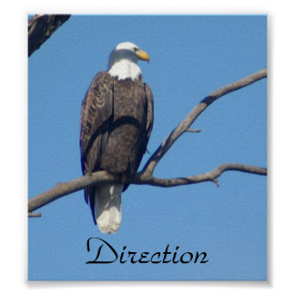 Direction Motivational Poster