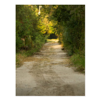 Dirt Road Postcard