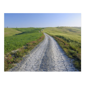Dirt Road through Fields and Hills, Val d'Orcia, Postcard