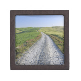 Dirt Road through Fields and Hills, Val d'Orcia, Premium Trinket Box
