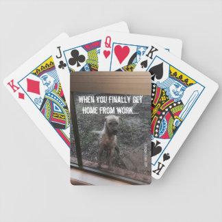 dirty_dog accessories poker deck