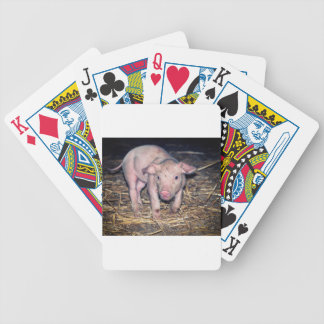 Dirty piglet bicycle playing cards