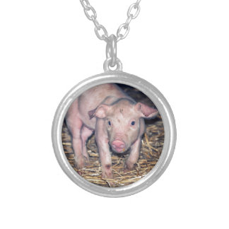 Dirty piglet silver plated necklace