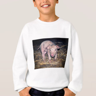 Dirty piglet sweatshirt