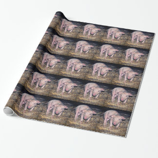 Dirty piglet wrapping paper