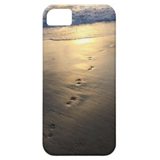 Disappearing Footprints Case For The iPhone 5