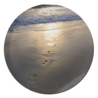 Disappearing Footprints Plate