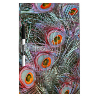 Disco 70s Peacock Eyes Dry Erase White Board