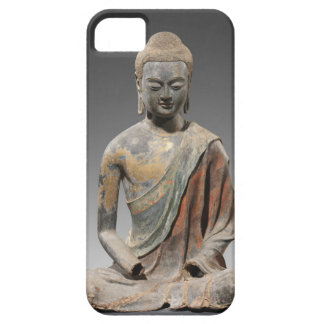 Discolored Buddha Sculpture - Tang dynasty (618) iPhone 5 Covers