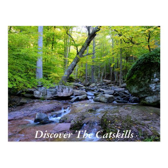 Discover the Catskills 5 Postcard