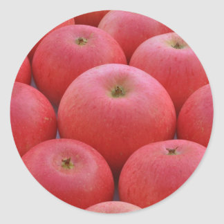 Discovery Apples Classic Round Sticker