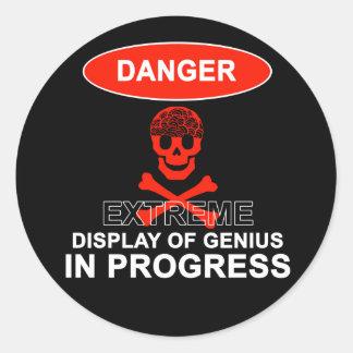 Display of Genius Round Sticker