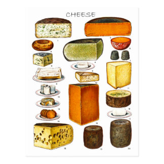 Display of Types of Cheese Postcard