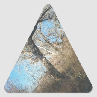 Distant Tree Triangle Stickers