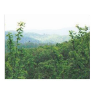 distant view smokies #70 postcard