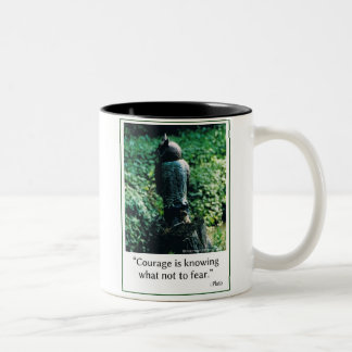 Distinctive 11 oz. two-tone mug for courage