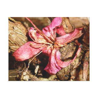 Distinctive close-up photo pink blossom canvas print