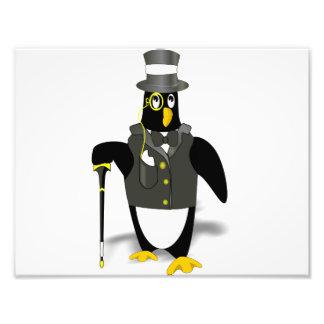 Distinguished Penguin Photograph