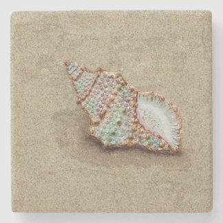 Distorsio Seashell On Sand Stone Coaster