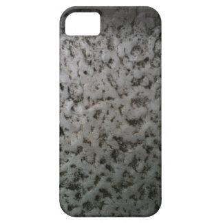 Distressed Aluminun iPhone 5 iPhone 5 Cases