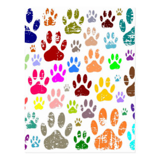 Distressed Colorful Dow Paw Prints Postcard