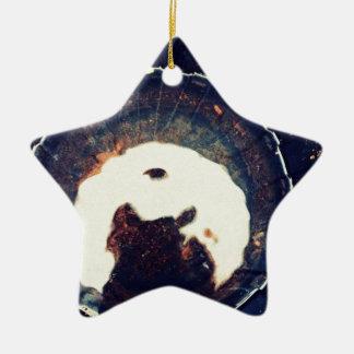 Disturbed waters ceramic star ornament