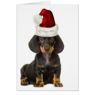 Ditzy Dogs~Original Notecard~Dachshund Card
